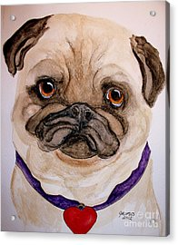 Studley Has A Heart Acrylic Print by Carol Grimes