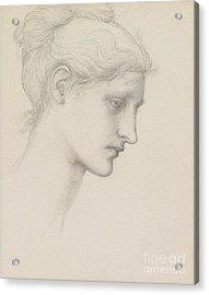 Study For Laus Veneria Acrylic Print by Sir Edward Burne Jones