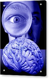 Studying The Brain, Conceptual Image Acrylic Print by Victor De Schwanberg