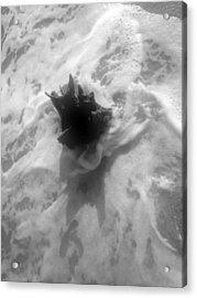 Stump In The Surf Acrylic Print by Elizabeth  Doran
