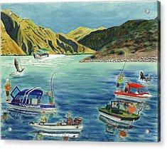 Sturgeon Rodeo Acrylic Print by Tim Koziol