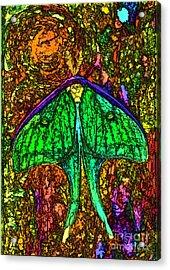 Stylized Luna Moth Acrylic Print by Clare VanderVeen