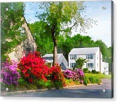 Suburban Azalea Garden Acrylic Print by Susan Savad