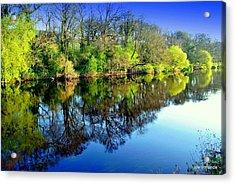 Suir Reflections Acrylic Print