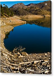 Summer At Seaman's Reservoir Acrylic Print by Harry Strharsky