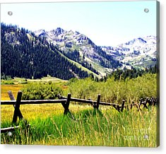 Acrylic Print featuring the photograph Summer At Squaw Valley by Anne Raczkowski