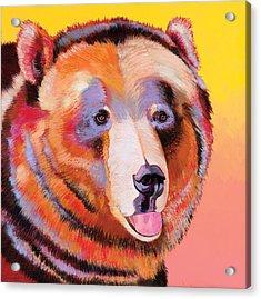 Summer Bear Acrylic Print by Bob Coonts