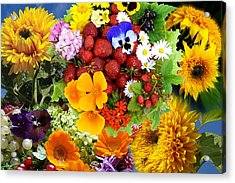 Acrylic Print featuring the photograph Summer Collage - Imagination by Aleksandr Volkov