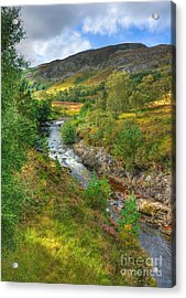 Summer Colour In The Glen Acrylic Print by John Kelly