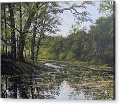 Summer Creek Reflections Acrylic Print