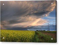 Summer Evening Storm Blowing Over Ripe Acrylic Print by Dan Jurak