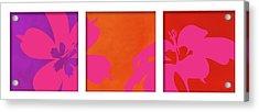 Summer Flowers Acrylic Print by Nomi Elboim