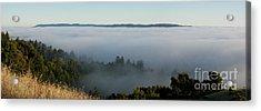 Summer Fog Rolls In Acrylic Print by Matt Tilghman