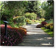 Acrylic Print featuring the photograph Summer Garden Path by Kimberly Mackowski