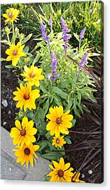 Acrylic Print featuring the photograph Summer Garden by Robin Regan