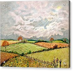 Summer Harvest Acrylic Print by Marilyn Smith