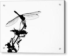 Summer Memory Acrylic Print