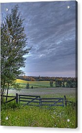 Summer Pasture Acrylic Print by Heather  Rivet