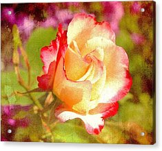 Summer Rose With Texture Acrylic Print by Cathie Tyler