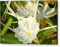 Summer Snowflake Acrylic Print