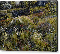 Acrylic Print featuring the painting Summer Splendor by Steve Spencer