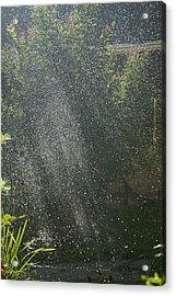 Summer Sun Rays Acrylic Print by Lisa Missenda