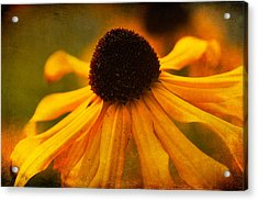 Summers Bloom Acrylic Print