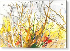 Summer's End Acrylic Print by Vannucci Fine Art