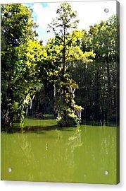 Summertime At Green Field Lake Acrylic Print