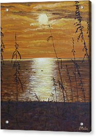 Sun Setting In Florida Acrylic Print by Donna Muller