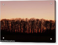 Acrylic Print featuring the photograph Sundown In Silhouette by Rachel Cohen