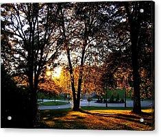 Sundown In Stanley Park Acrylic Print by Will Borden