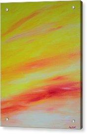 Sundunes Acrylic Print by Tony Allison