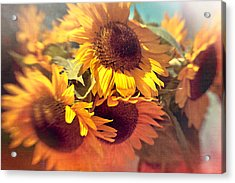 Sunflowers Acrylic Print by Boston Thek Imagery