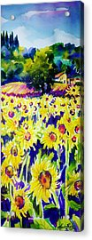 Sunflowers Of Tuscany  Sold Original Prints Available Acrylic Print by Therese Fowler-Bailey