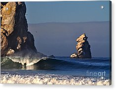 Acrylic Print featuring the photograph Sunlight by Johanne Peale