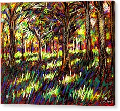 Sunlight Through The Trees Acrylic Print by John  Nolan