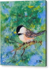 Sunny Day Chickadee - Bird 2 Acrylic Print