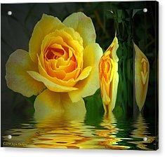 Sunny Delight And Vase 2 Acrylic Print by Joyce Dickens