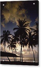 Sunrise At La Sagesse Bay Over Marquis Acrylic Print by Gerry Ellis