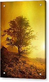 Sunrise Flare Acrylic Print by Svetlana Sewell