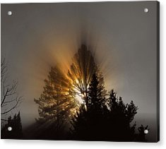 Acrylic Print featuring the photograph Sunrise by Irina Hays