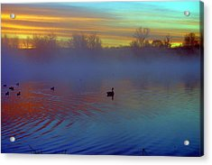 Sunrise On Duck Pond Acrylic Print by Laurie Prentice