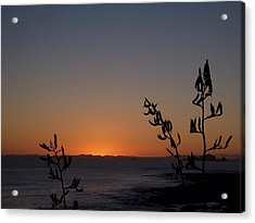 Acrylic Print featuring the photograph Sunrise On East Coast Of North Island 2 by Peter Mooyman