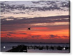 Sunrise On The Indian River Acrylic Print by Jeanne Andrews