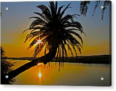 Acrylic Print featuring the photograph Sunrise On The Loop by Alice Gipson