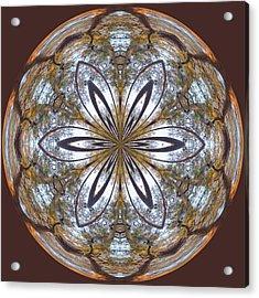 Sunrise Orb Acrylic Print by Sandi Blood
