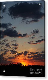 Acrylic Print featuring the photograph Sunrise Over Field by Everett Houser