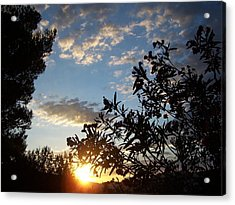 Sunrise Over The Hill Acrylic Print by Christine Drake
