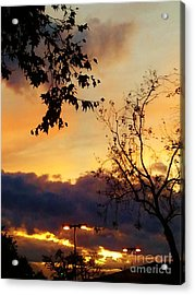 Acrylic Print featuring the photograph Sunset 2 by Jasna Gopic